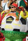 """图文-葡萄牙球迷现场助威葡萄牙标准""""球""""迷"""