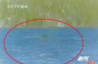 """北京游客用DV录下新疆喀纳斯""""湖怪""""(组图)"""