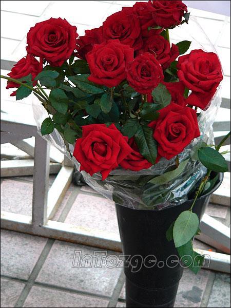 科技时代 科技数码 > 正文    凡购买s550的朋友均可获得玫瑰花,汽球