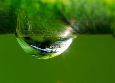 细心体味生活之美微距数码相机精品推荐