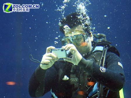 水的世界很奇妙防水型数码相机推荐(图)