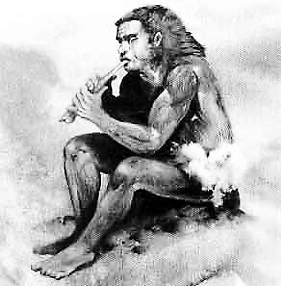 北京猿人可能是早期食人族朊病毒基因揭秘