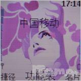 高雅粉色情缘诺基亚直板手机2626评测(3)