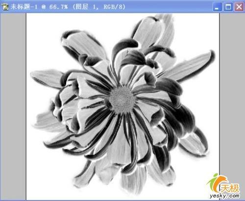 花朵怎么剪纸步骤图解简单