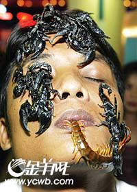 科技时代_泰国蜈蚣王和蝎后完婚 婚礼将在棺材里举行