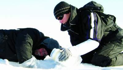 科技时代_揭秘地球上唯一冻不死的动物:极地冰虫(图)
