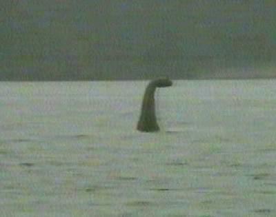 科技时代_尼斯湖怪争论未平 北美湖怪录像惊动FBI(图)