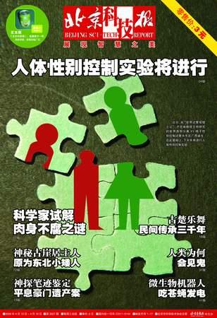 科技时代_《北京科技报》2006年4月12日封面