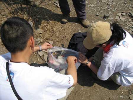 科技时代_图文:体能训练营活动中志愿者收集矿泉水瓶