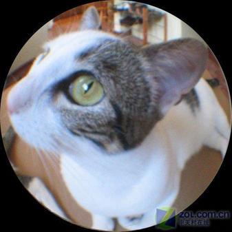 几十元猫眼镜头改造超广角数码相机(2)