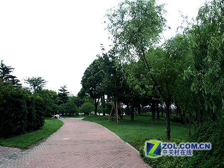 酷睿2发布地 上海世纪公园优美风景秀