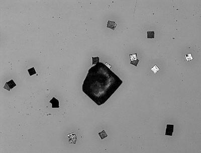 科技时代_日立推出世界最小RFID芯片