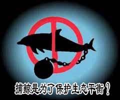 科技时代_特别策划:日本捕鲸是为了保护生态平衡?