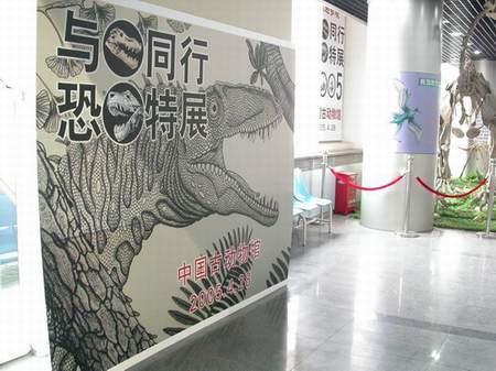 中国古动物馆五一特展:与龙同行(组图)