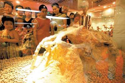 自然博物馆展148件镇馆之宝绝种鱼俩鼻孔