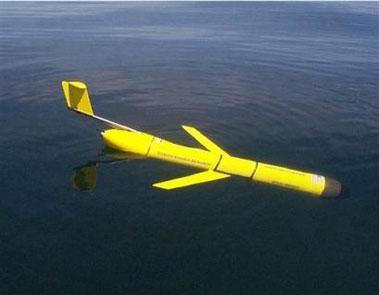 美国推出水下滑翔机可钻入海里观察鲸鱼