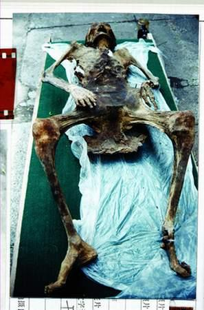 东北湿地干尸复活之谜棺木里满是抓痕(图)