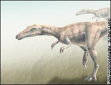 德国食肉恐龙化石引发羽毛进化过程思考(图)