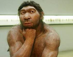 德研究人员制出尼安德特原始人脸部修复模型