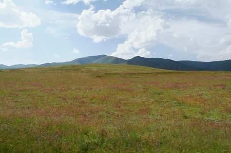 三星超越之旅照片:美丽的高原草地