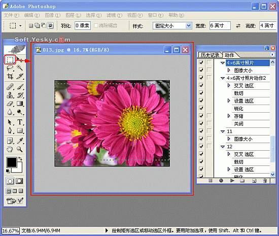 图解Photoshop按比例自动批量裁剪照片