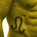 狮子座肌肉型男身体地图秀(组图)