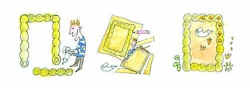 图为:坚果画框制作步骤4,5,6