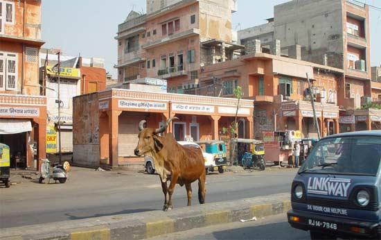 印度街道风景图片