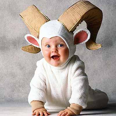 趣图:超级可爱宝宝装