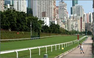 著名的香港赛马场