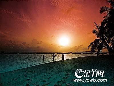 一群深青色的海豚掠出海面,消失在船尾……     土著风情沙滩赛蟹