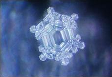 神奇的水结晶 - lzylm123456 - 土土