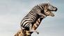 爆笑动物园海报