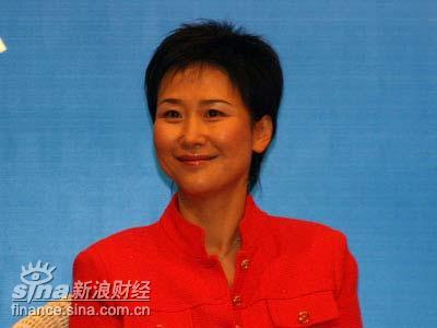 图文:中国电力国际发展公司CEO李小林