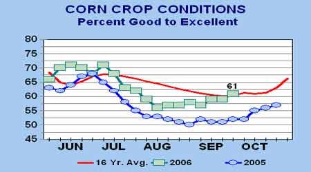 豆类市场还在盘整之中玉米受到新粮上市压制(2)