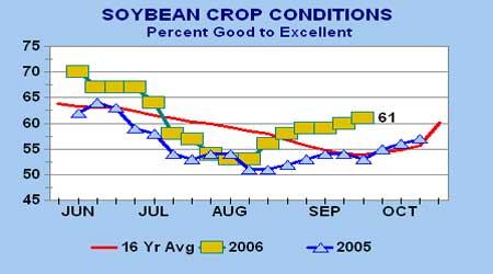 豆类市场还在盘整之中玉米受到新粮上市压制(3)