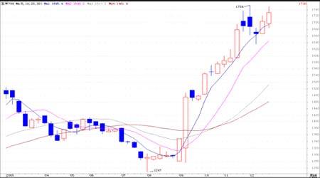 玉米期价出现小幅反弹市场总体保持上涨态势