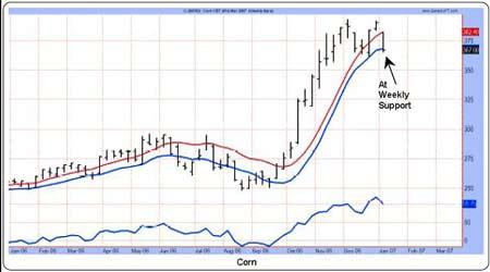 豆市调整牛市预期未变玉米持续下跌寻找支撑