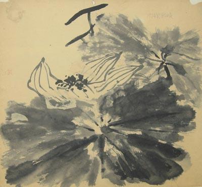 张加洛写生画稿