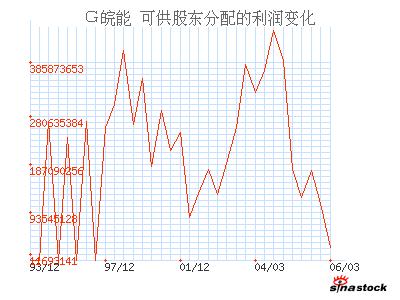 皖能电力(000543)_可供股东分配的利润_利润