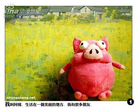 图文故事 一只特立独行的猪 组图