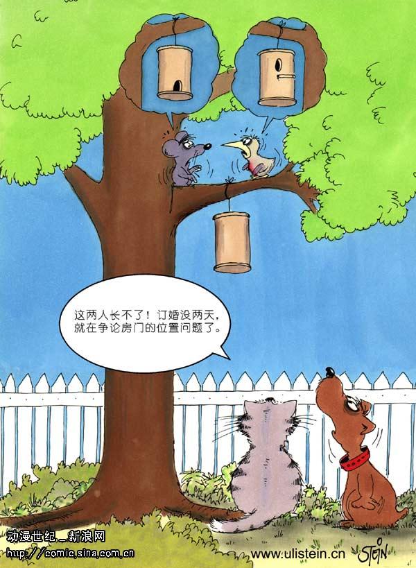 森林动物运动会图画分享展示