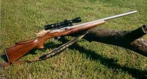 枪 武器 300_162