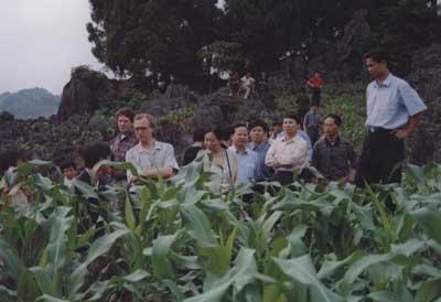 图文:世界银行副行长在凤山县考察