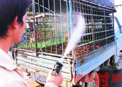 广州启动逢周三周五禽流感疫情零报告制度(图)
