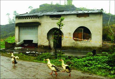 重庆爆炸案事发茶馆并非偶然失地农民出路堪忧