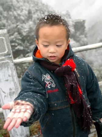 图文:庐山飞雪(4)