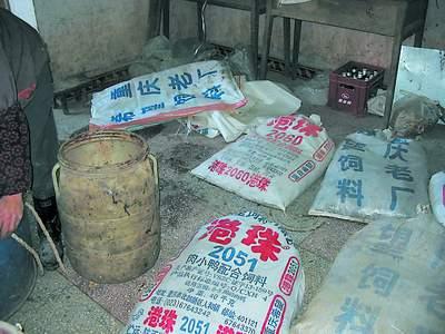 重庆百吨癞蛤蟆流向广州等地危及生态安全(图)