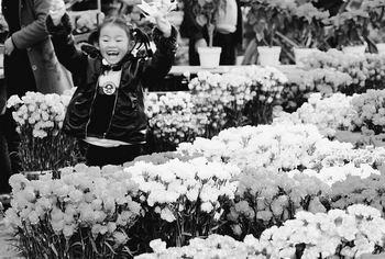 海南省人口出生率_台湾人口出生率