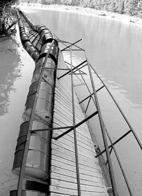 整个浮桥都是靠一只只铁皮油桶浮力支撑